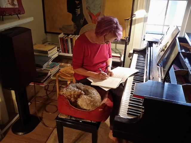 First blog post |The Old Woman and thePiano